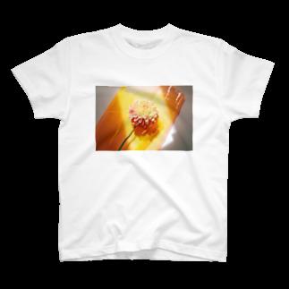 ぱんだぽんの陽を浴びるダリア T-shirts