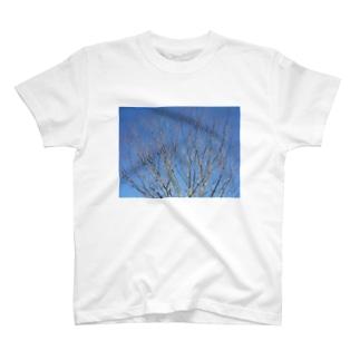美しい空 T-shirts