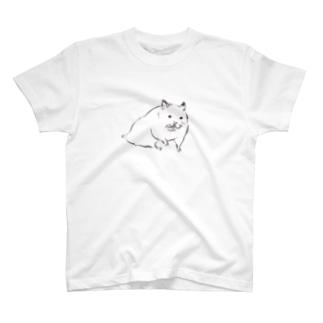 ヌルッとしたシュハム T-shirts