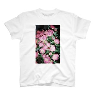 harucamera シャクヤク T-shirts