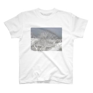 春直前の木 T-shirts