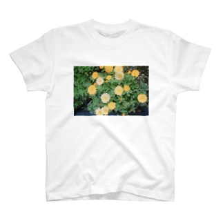 さんぽみち T-shirts