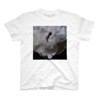 しゃくやく T-shirts