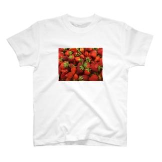 TAIWANのイチゴ T-shirts