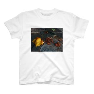 落ち葉 散る DATA_P_137 T-shirts