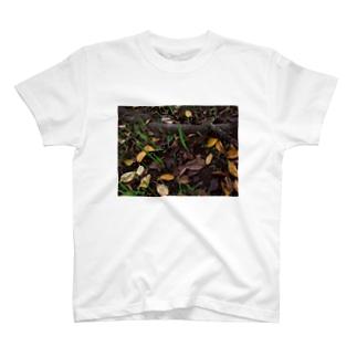 落ち葉と根 DATA_P_138 T-shirts