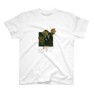 christmas rose moth T-shirts