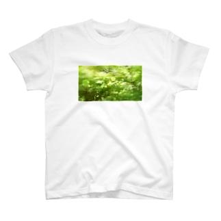 森へ(きらきら) T-Shirt