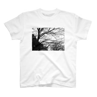 枯れ木 T-shirts