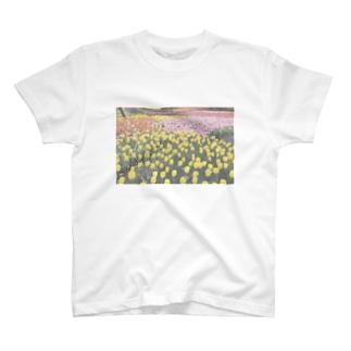 ちゅうりっぷばたけTしゃつ T-shirts
