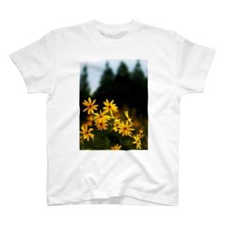 菊芋と樹木 DATA_P_139 tree T-shirts