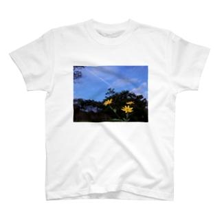 菊芋と樹木と空 DATA_P_140 tree sky T-shirts
