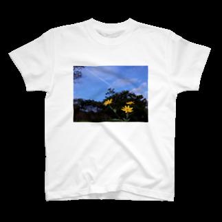 hiroki-naraの菊芋と樹木と空 DATA_P_140 tree sky T-shirts
