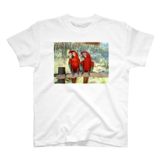 小鳥インコ T-shirts