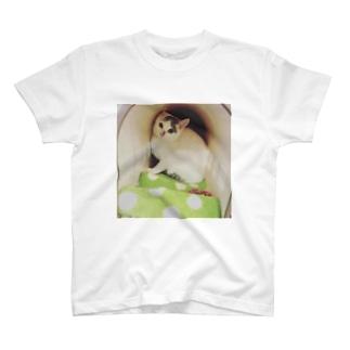 新しい家族☆おもち君 T-shirts