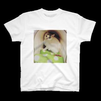 ねこまる広場の新しい家族☆おもち君 T-shirts