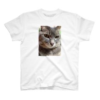 不機嫌ネコ T-shirts