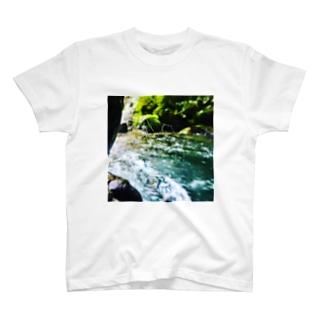 濡れた蜘蛛の巣 T-shirts