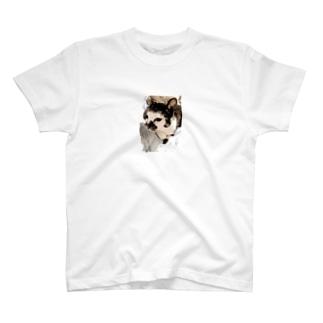 ぽちゃこ T-shirts
