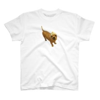 犬×玉ねぎ T-shirts