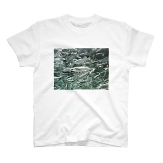 魚群 T-shirts