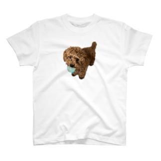 伝説の秘宝を携えし犬 T-shirts