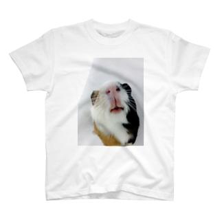 ハナナガイチャン T-shirts