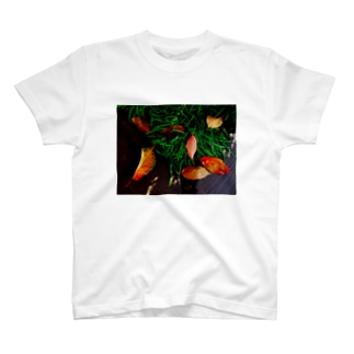 散り際の命 DATA_P_146 T-shirts