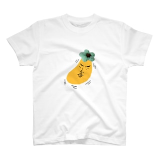 これが本当の渋柿 T-shirts