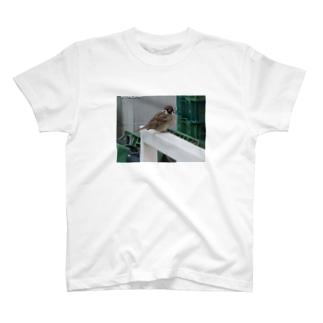 ちゅん T-shirts