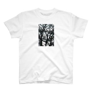harucamera 図書館 T-shirts