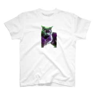 neko no meeko.Colorful T-shirts