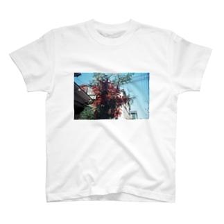 南天 T-shirts