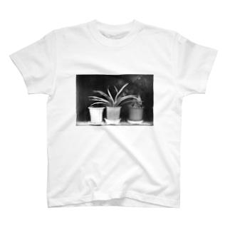 植木鉢 T-shirts