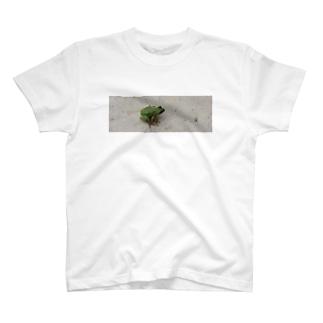 雨蛙。 T-shirts