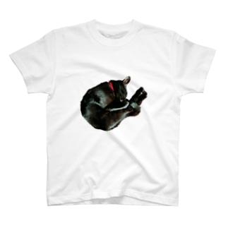 kyskの猫を抱きしめたい T-shirts