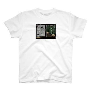 gang T-shirts