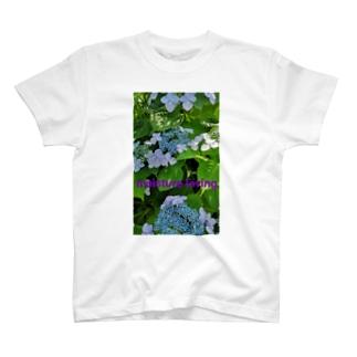saraquaarinaの紫陽花Ⅱ T-Shirt