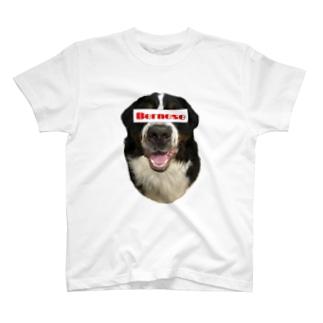 BMD ブランド風 T-shirts