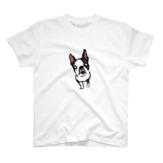 テステス T-shirts