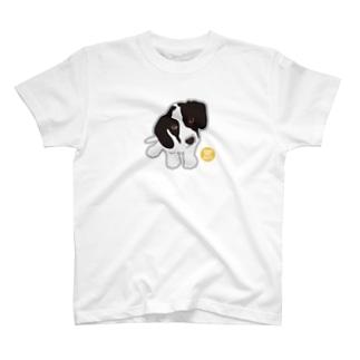 KORO T-shirts