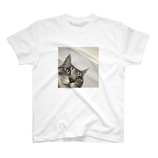neko tubaki T-shirts