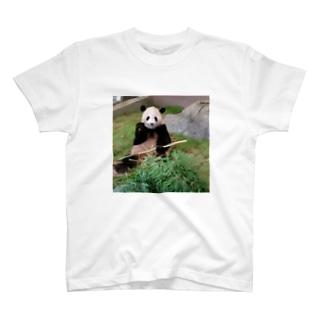 パンダ食事中 T-shirts