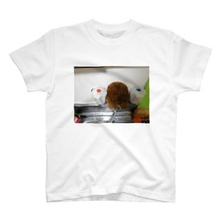 たわし T-shirts