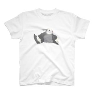 オカメインコ定点観測のホワイトフェイス オカメインコ T-shirts