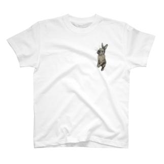 うたっち(チョコ) T-shirts