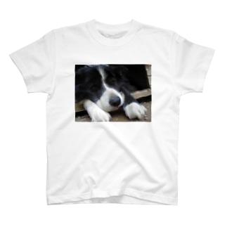 黒い犬 T-shirts