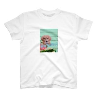 あなたは何を見つめているのTシャツ T-shirts