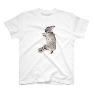 ごろん寝(雪) T-shirts
