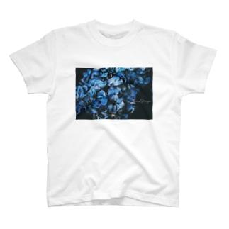 【花途夢】紫陽花 ph data./2020.5.27 T-shirts